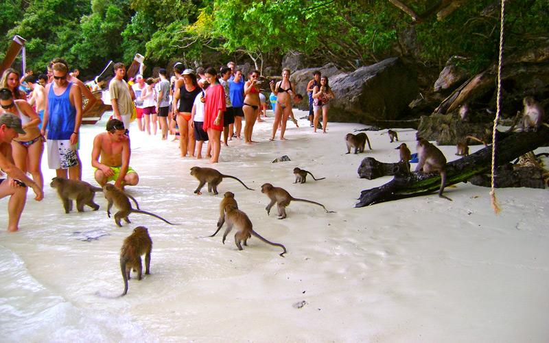 อ่าวลิง-เกาะพีพี-กระบี่