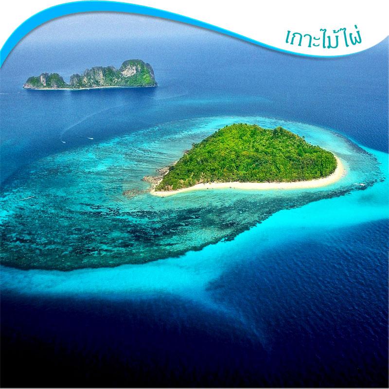 ทัวร์พีพี 1 วัน แวะที่เกาะไผ่