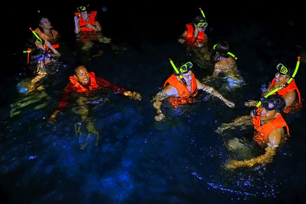 ดำน้ำกลางคืน ดูแพลงก์ตอน ทริป 7 เกาะ กระบี่