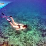 รีวิว ดำน้ำดูปะการัง กระบี่