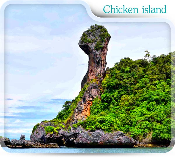 Chicken island in 4 Island package
